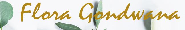 Flora Gondwana